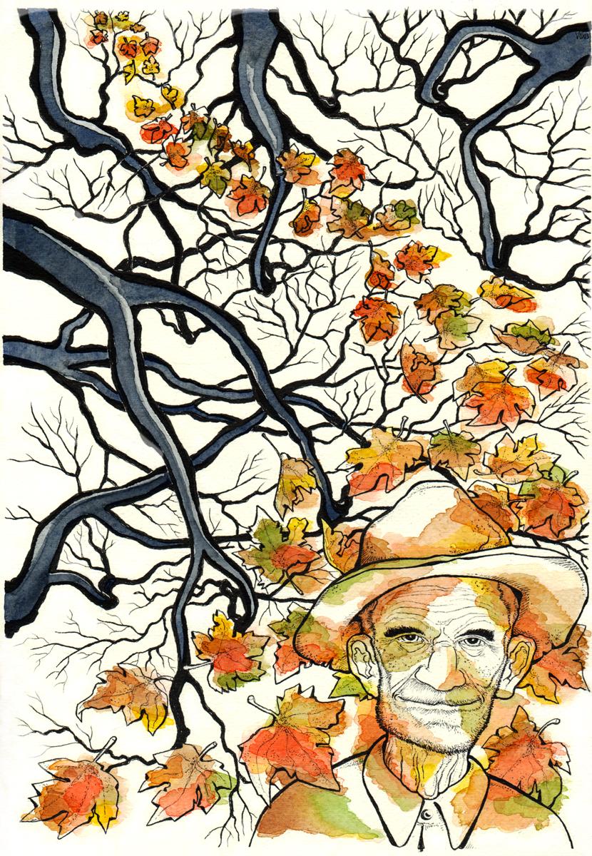 cover-corso-del-tempo-autunno-albero-vecchio-illustration-fabio-delvo
