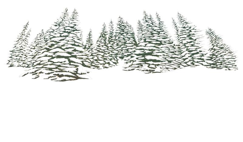 devo-scegliere-chi-sognera-per-me-rrose-selavy-jack-london-buch-alberi-neve-sfondo-libro-illustrato-illustrated-book-illustrations-illustrazioni-acquerello-watercolors-fabio-delvo-delvox-publishing